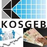Sifirfaiz2017.kosgeb.gov.tr Giriş İle Kosgeb Başvuru Sonuçlarını Öğrenme